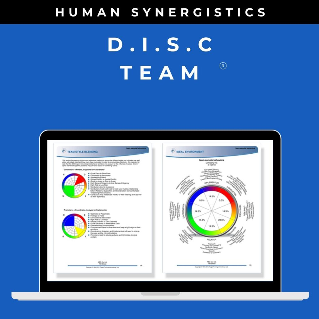 DISC Profile – Team